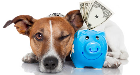 To Sell or Not to Sell Your Business in 2021—Don't Let the Tax Tail Wag the Dog.